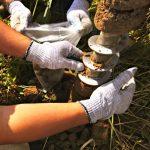 Отчет об экологических изысканиях — это обязательный документ для оформления до начала строительных работ